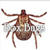 Click here & Play to Box Bugs the online game !
