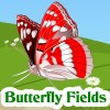 Click here & Play to Butterfly Fields the online game !