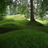 Click here & Play to Jigsaw: Grassy Path the online game !