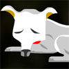 Click here & Play to The Chihuahua Case the online game !