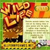 Click here & Play to Wild Life Puzzle the online game !